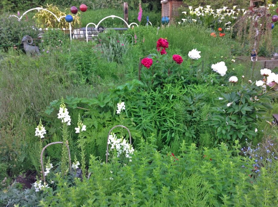 Lush, verdant Gardens